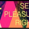 CSBR Call for Submissions! Sexual Pleasure, Sexual Rights